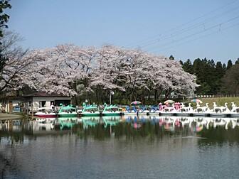 県民公園太閤山ランド