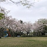 羽黒山公園