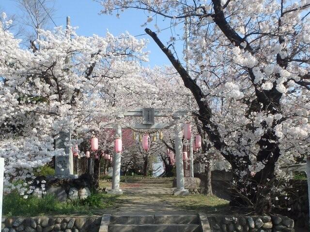 城山稲荷神社の写真
