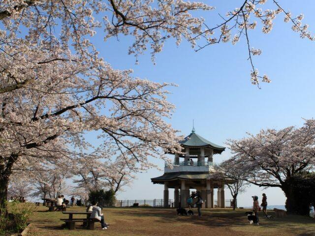弘法山公園の写真