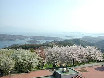 岡山いこいの村(シダレザクラ)