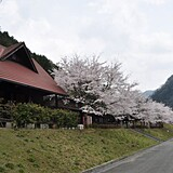 大原湖(佐波川ダム)