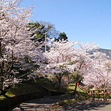 金竜山農村公園