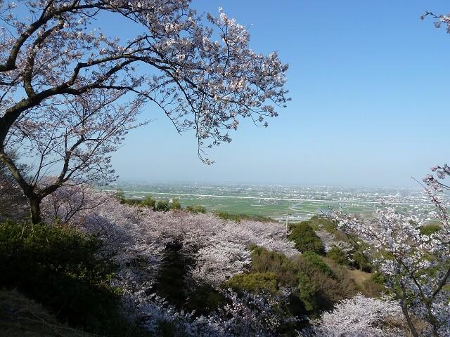 清水山の写真