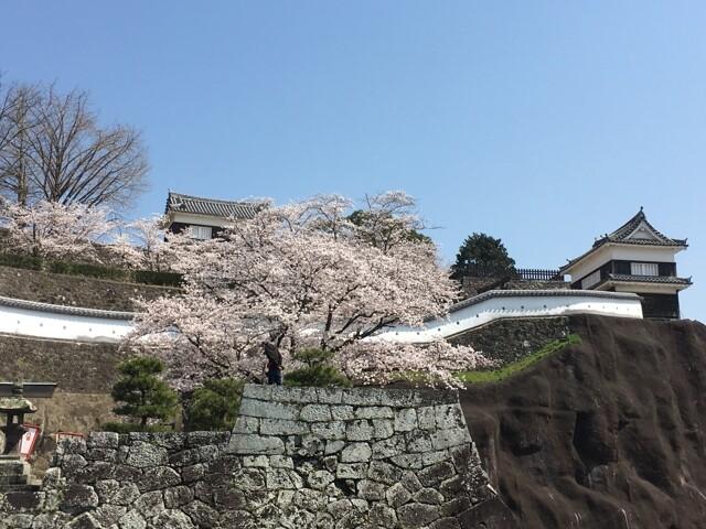 臼杵城址の写真