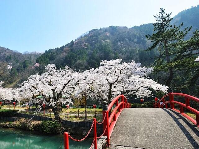 庄川水記念公園の写真