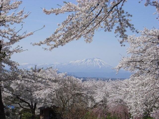 紫波城山公園の写真