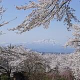 紫波城山公園