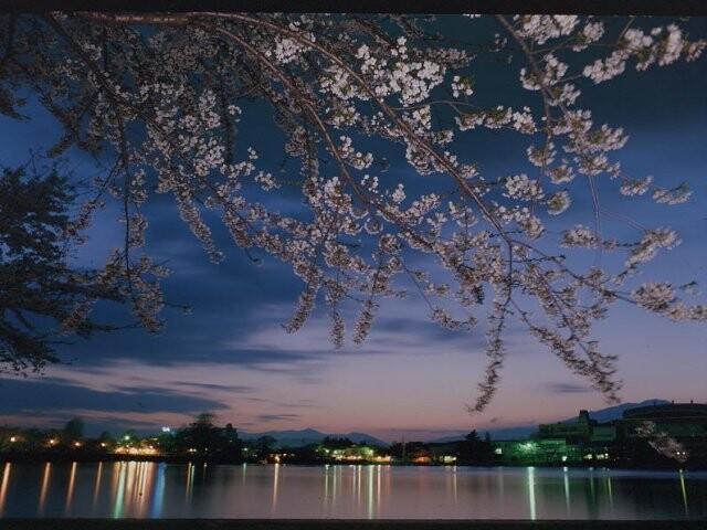 高松の池の写真