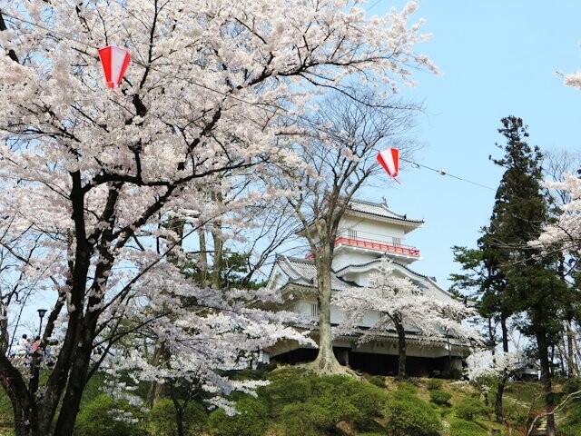 千秋公園の写真