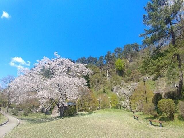 きみまち阪公園の写真