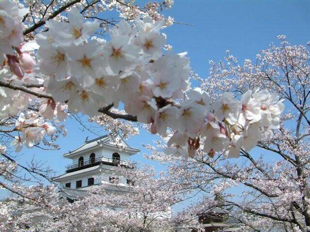 白石城本丸広場の写真