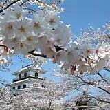 白石城本丸広場