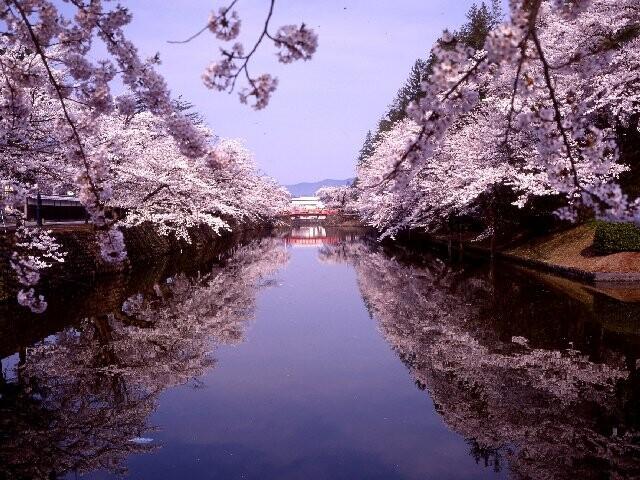 松が岬公園の写真
