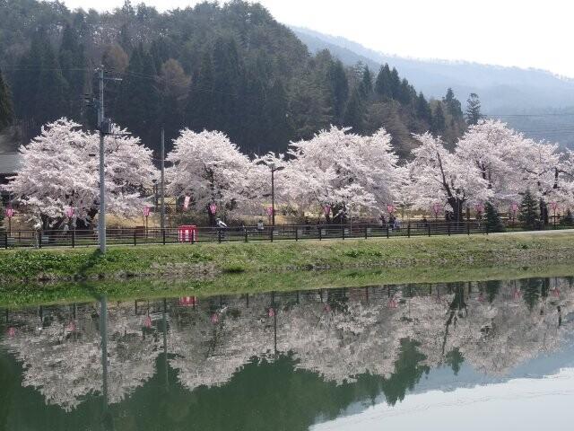 東沢公園の写真