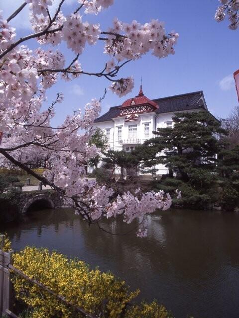 鶴岡公園の写真