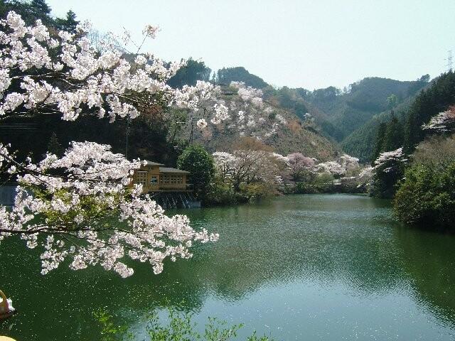 鎌北湖の写真