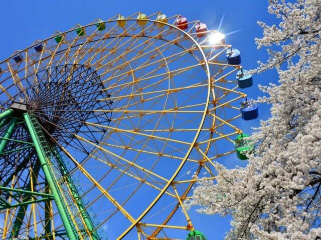 華蔵寺公園の写真