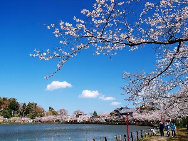 八鶴湖畔の写真