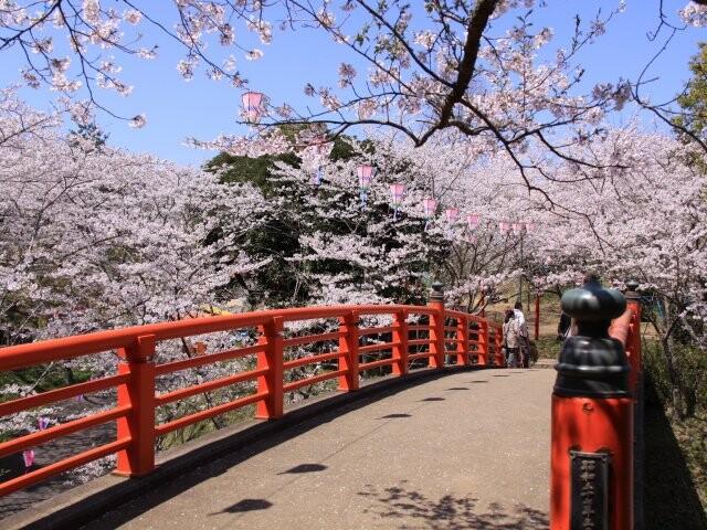 小見川城山公園の写真