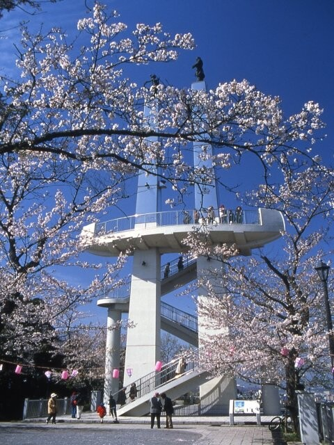 太田山公園の写真