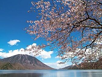 奥日光・中禅寺湖付近