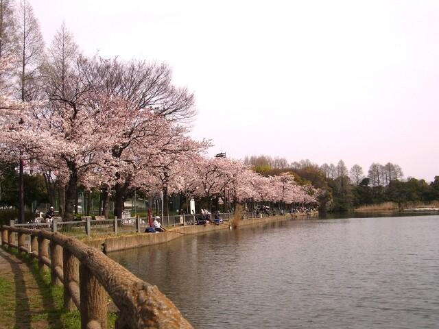 浮間公園の写真
