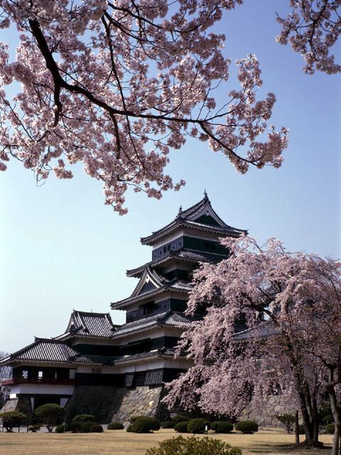 国宝松本城の写真