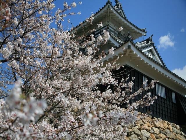 浜松城公園の写真