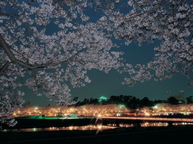 岡崎公園の写真