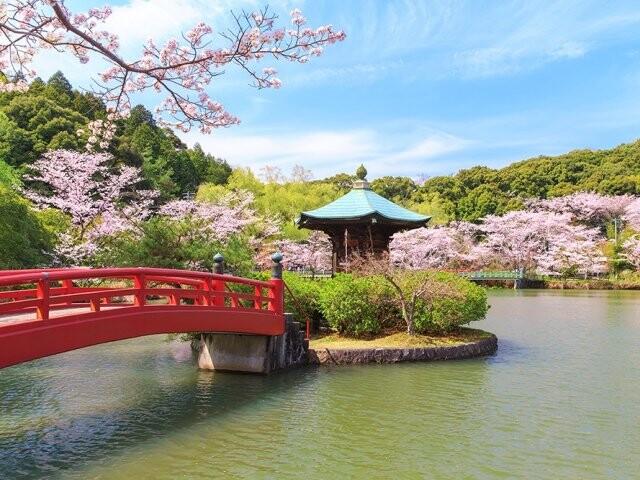 定光寺公園の写真
