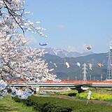 相川水辺公園