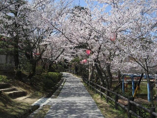 津偕楽公園の写真