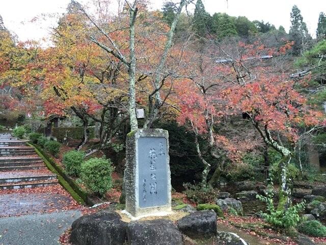 花筐公園の写真
