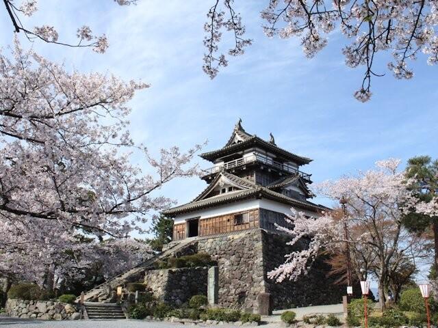 丸岡城(霞ヶ城公園)の写真