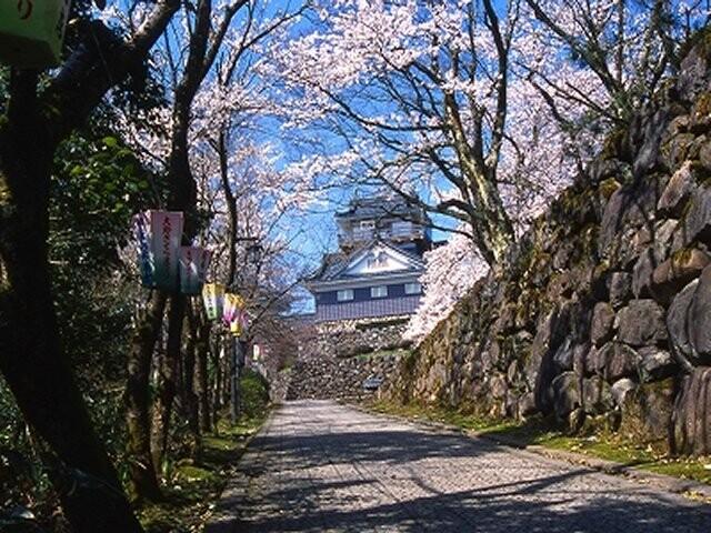 亀山公園の写真