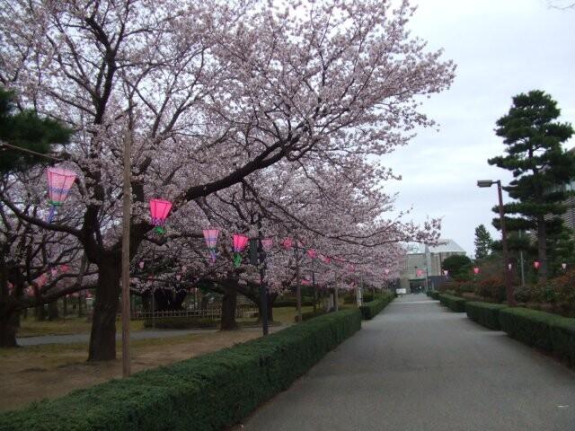 芦城公園の写真