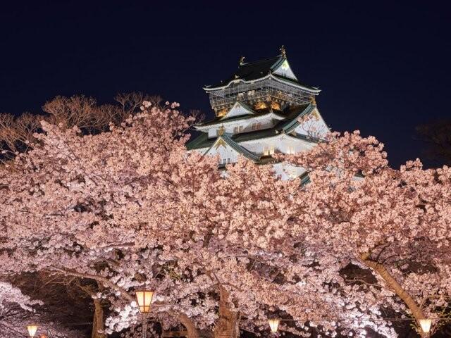 予想 2021 開花 桜の