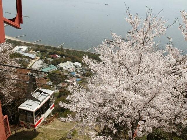 須磨浦公園の写真