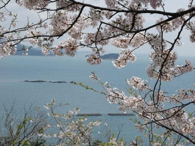 赤穂東御崎公園の写真