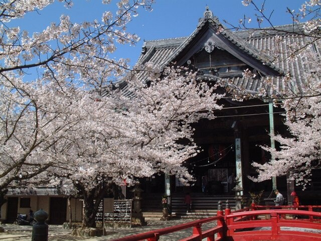 紀三井寺の写真
