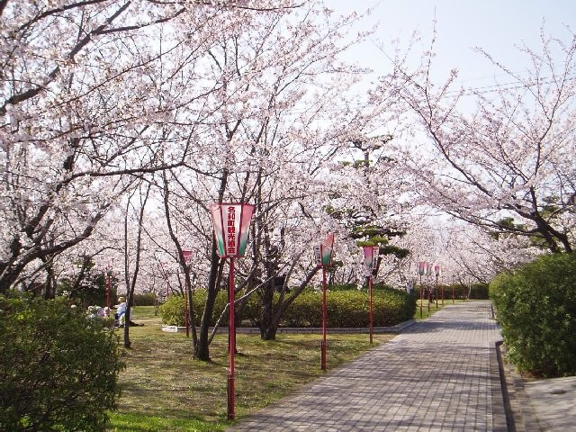 名和公園の写真