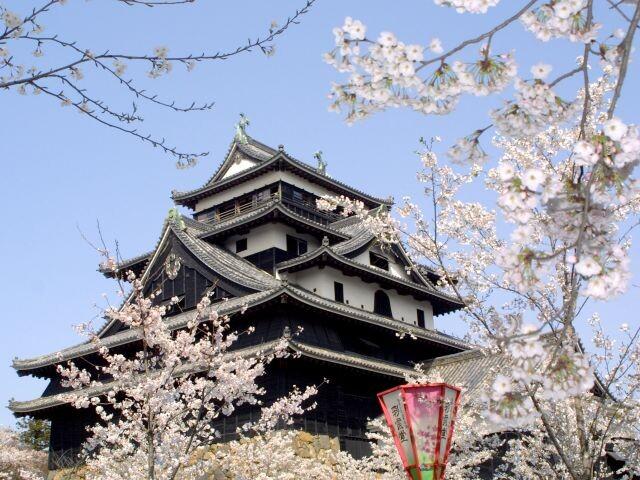 松江城山公園の写真