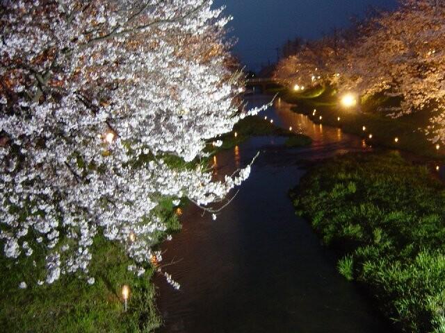 玉湯川堤の写真