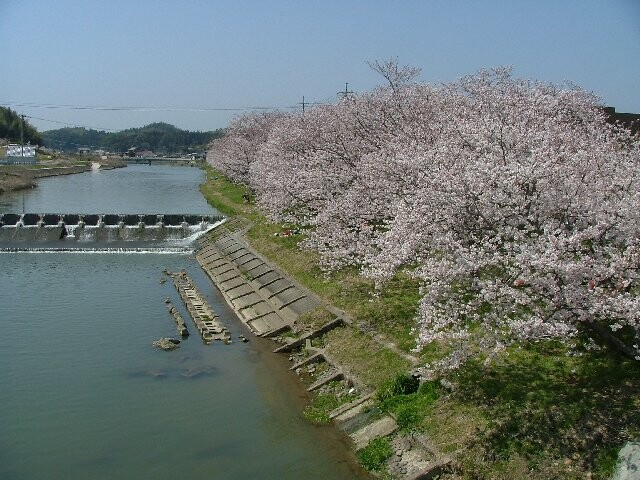 田布施川の写真