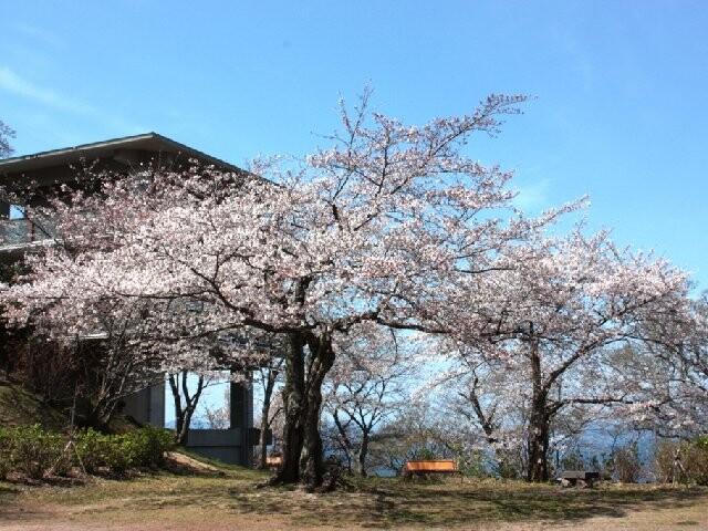 笠山の写真