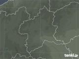 群馬県の雷レーダー(予報)