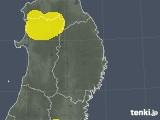 岩手県の雷レーダー(予報)